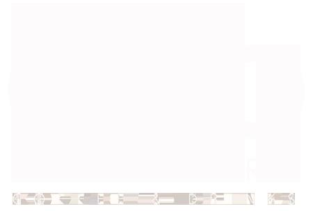 paralax-logo